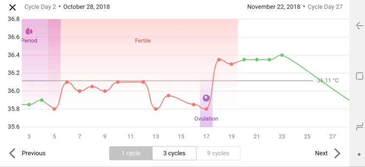 late october nc cycle